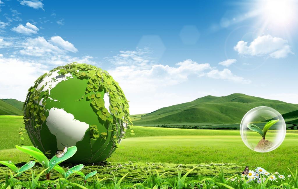 Ekosistem Nedir? Ekosistem Bozulursa Ne Olur?